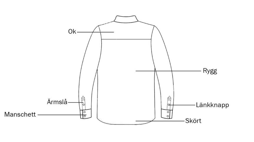 Skjorta informatik baksida