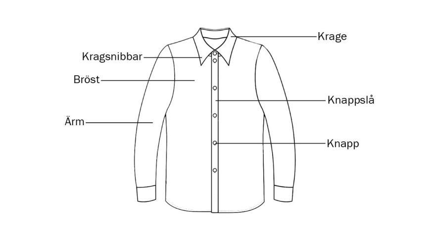 Skjorta informatik framsida